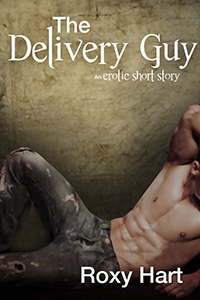 Erotic Short Story The Delivery Guy